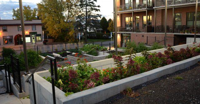 Chester Garden Terrace